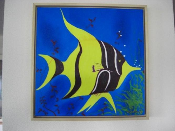 48 Ornamental Fish(Maanvis)