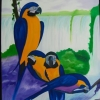 59 Parrots 1