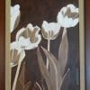 244 Tulpen 1