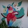 252 Muurschildering 2 Ara's
