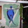 254 Muurschildering, hanging Hyacint papagaai