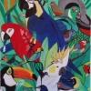 293 Birds of Brasil
