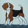 363 Beagle