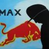 365 Max Verstappen