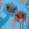 353 Struisvogels
